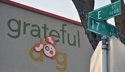 Grateful Dog 17th and E Street